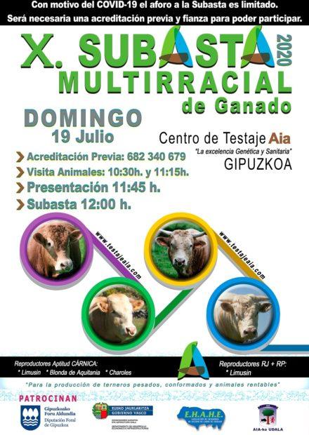 2020_07_19 - Cartel Anunciador AIA - castellano